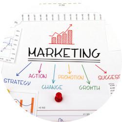 ESS Course thumbnail Marketing Essentials